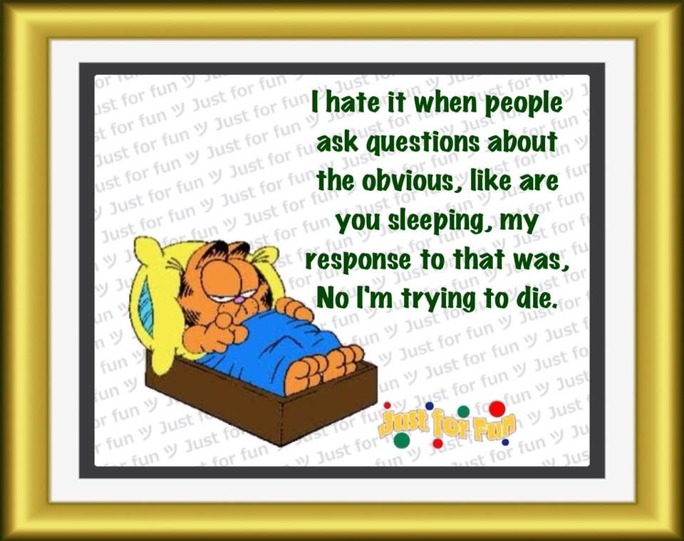 Trying To Die Garfield Quotes Funny Quotes Make Me Laugh