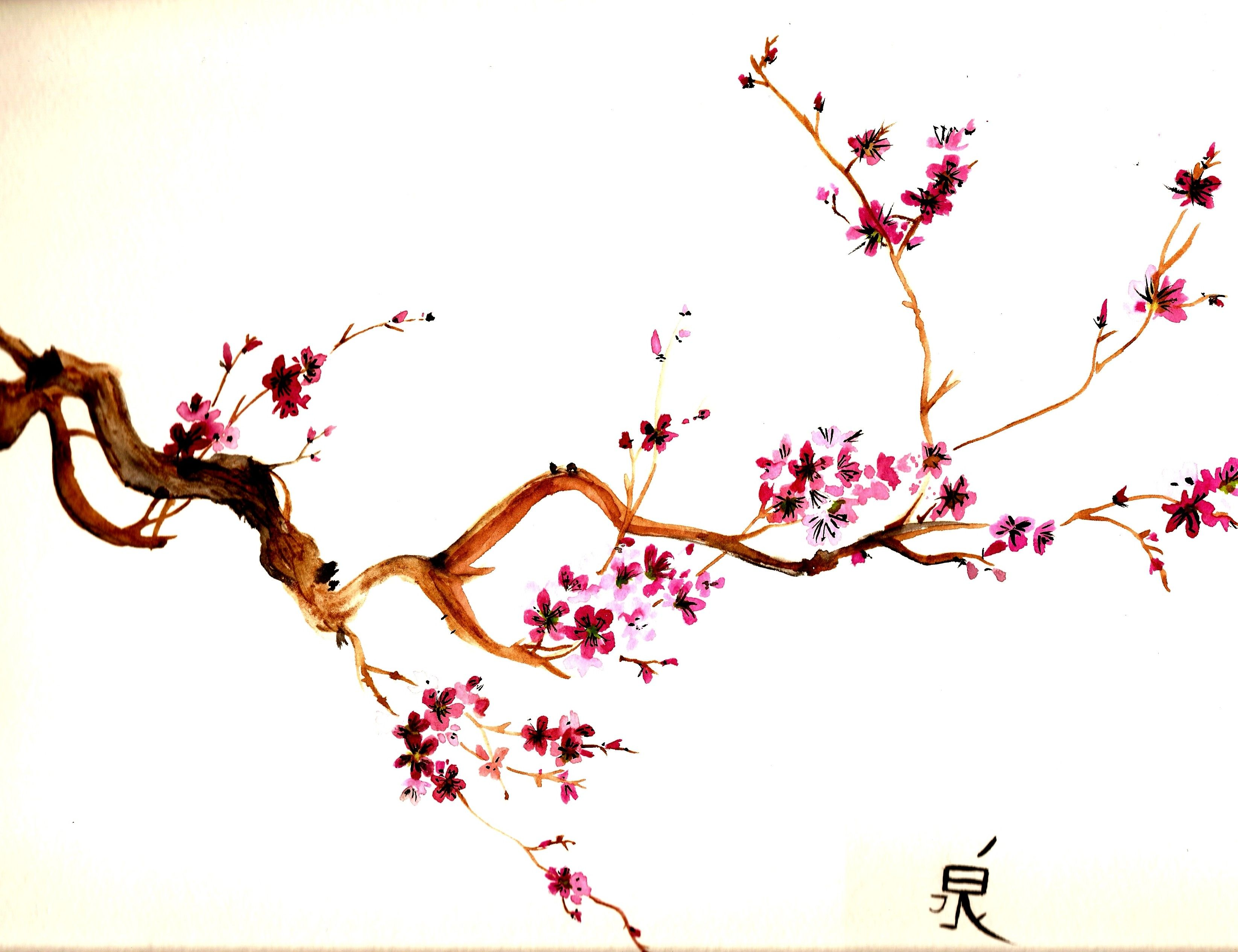 Sakura branch: what is, how to do massage, features of the procedure 44