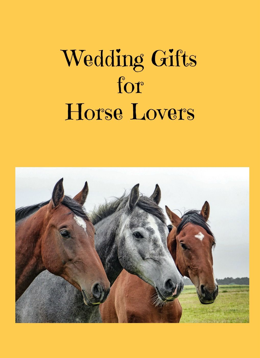 Best wedding gifts for horse lovers wedding gifts gifts