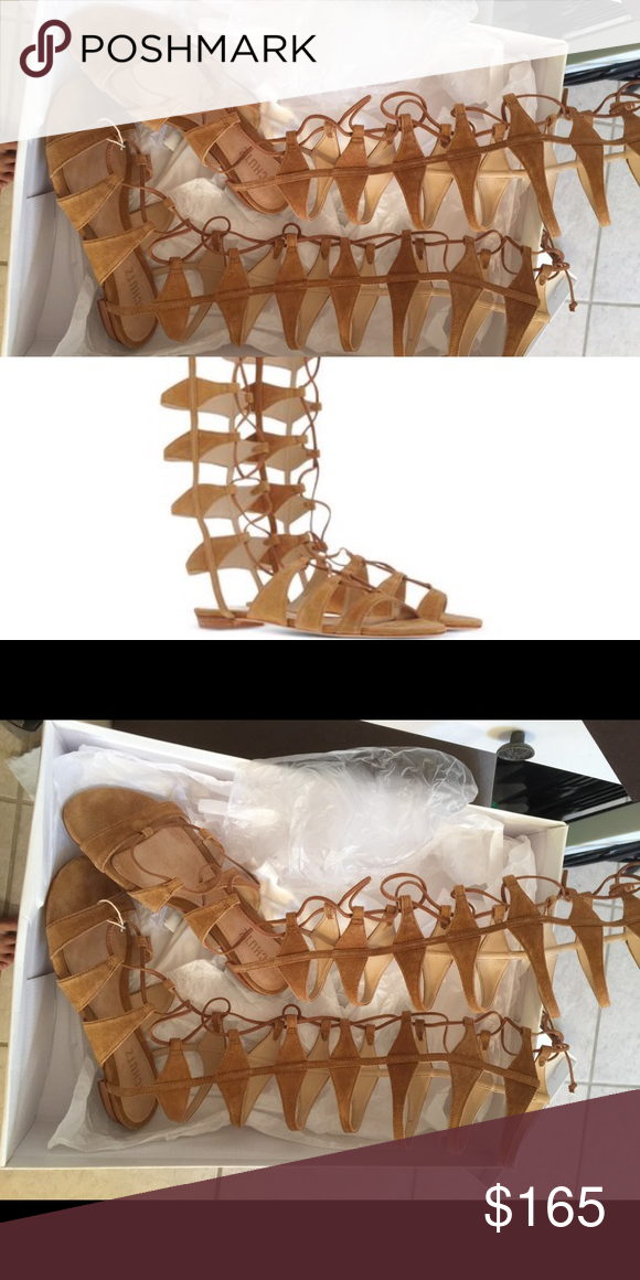 ✖️✖️SOLD✖️✖️Brand new Schutz gladiator sandals New in box euro size 38, fits 6.5US. very comfy ! SCHUTZ Shoes Sandals