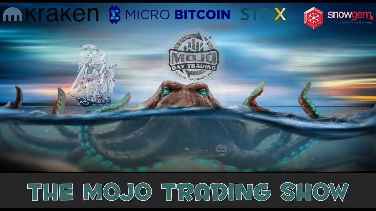 How To Trade Crypto on Margin 🍯 The Mojo Trading Show