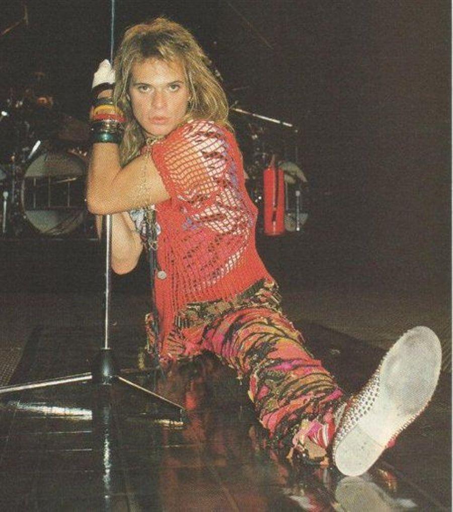 David Lee Roth David Lee Roth Van Halen David Lee