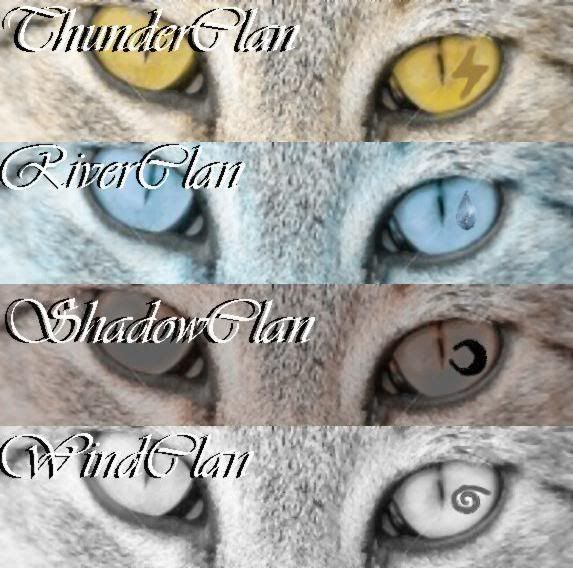 Warriors Don T Cry Pdf Book: ThunderClan, RiverClan, ShadowClan, WindClan. Don't Forget