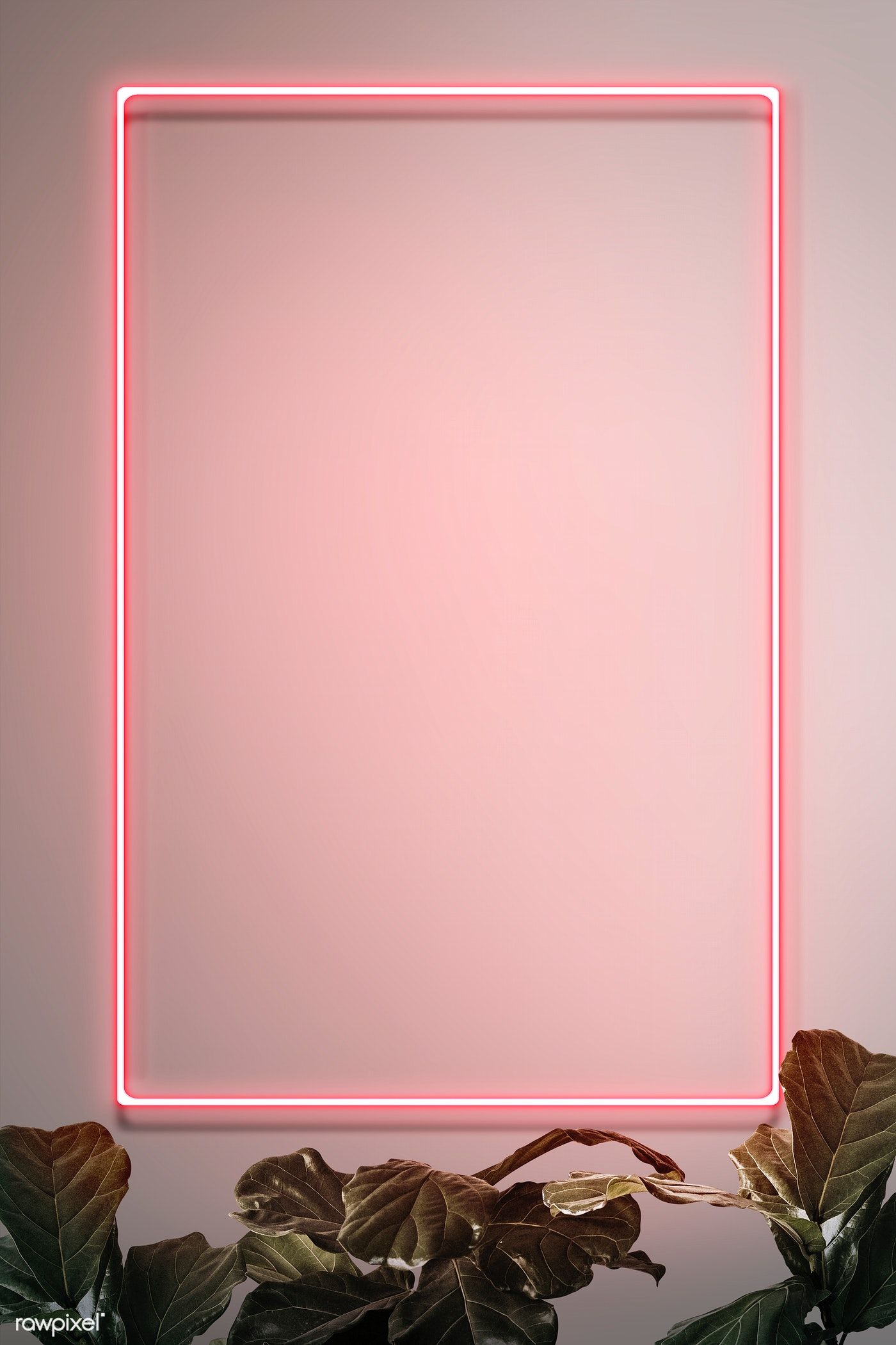 Download premium illustration of Pink neon frame on a wall