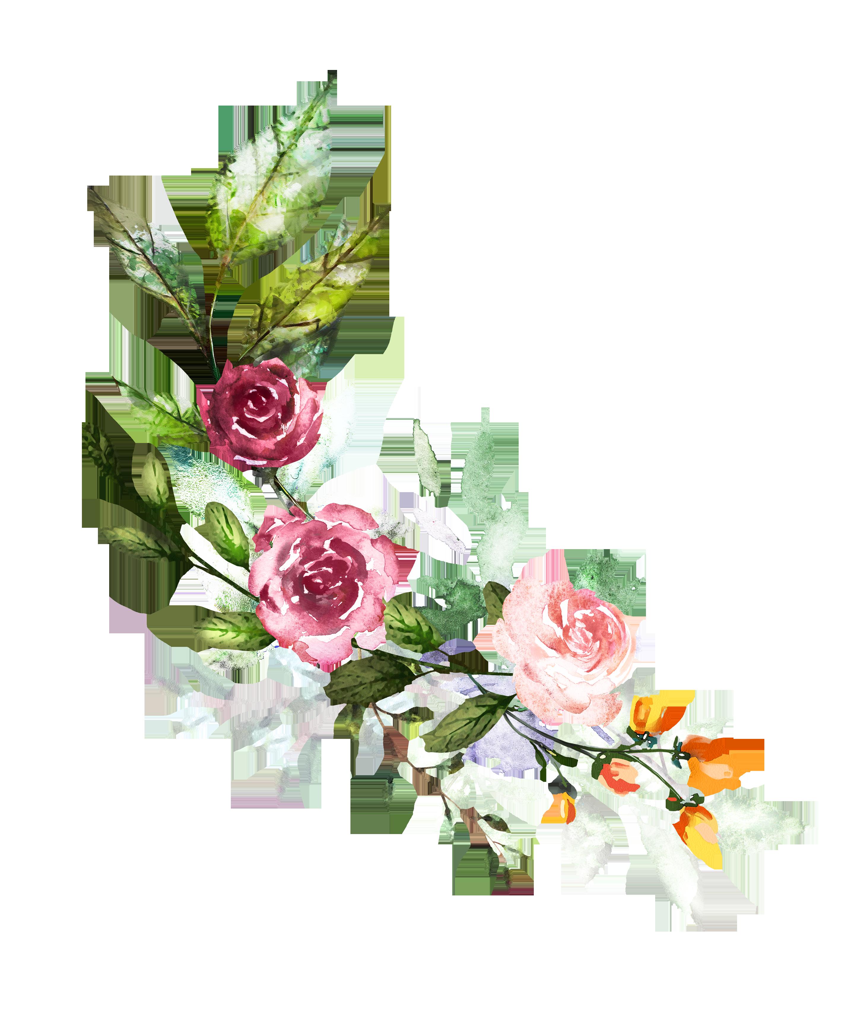 Vector Flores Convites Convites Casamento Casamento Png E: Watercolor Art, Watercolor Pictures E