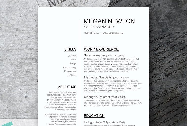 Plain and Simple \u2013 A Basic Resume Template Giveaway Modern resume