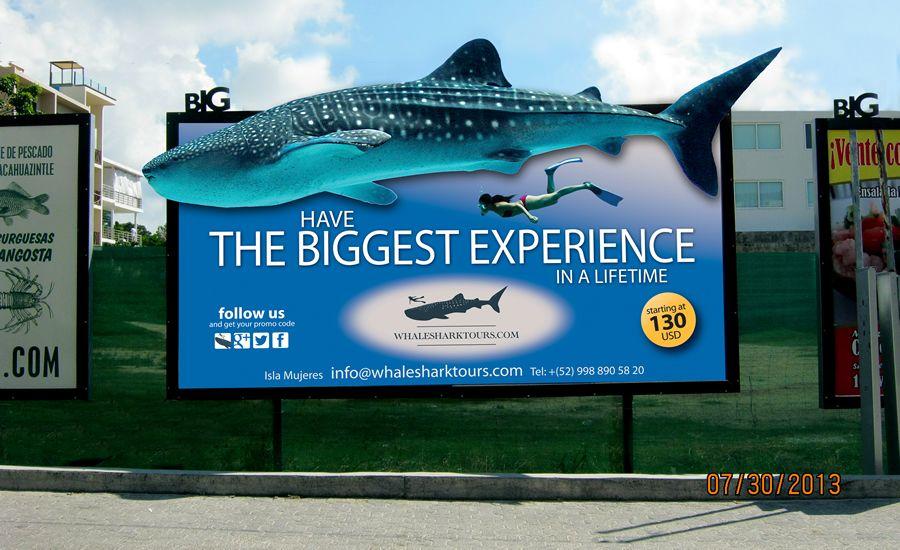 Una gran valla, para un gran recorrido para ver al gran tiburón ballena