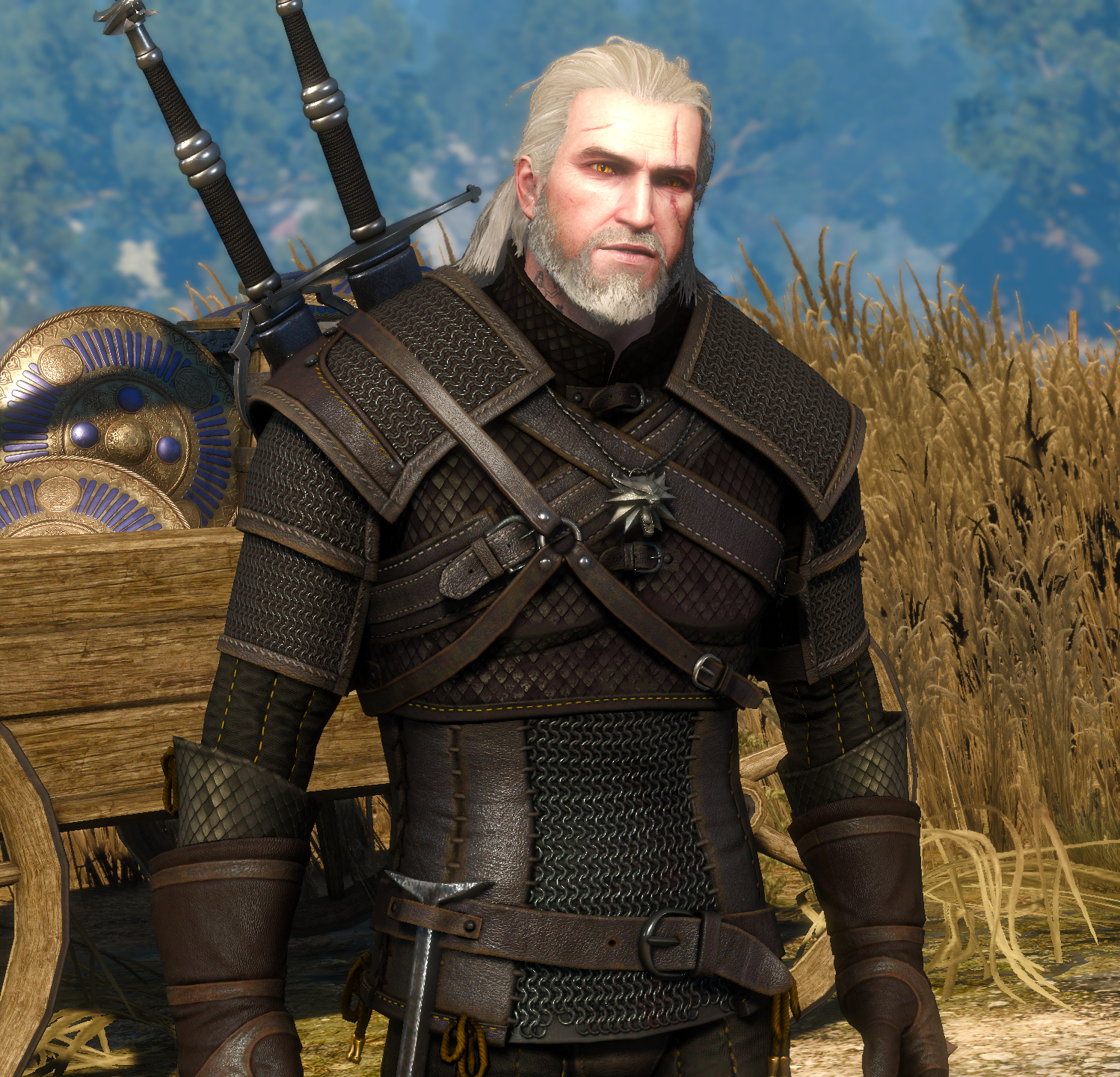 Pin By Mike Bumpous On The Witcher Witcher Armor The Witcher Wild Hunt The Witcher Game