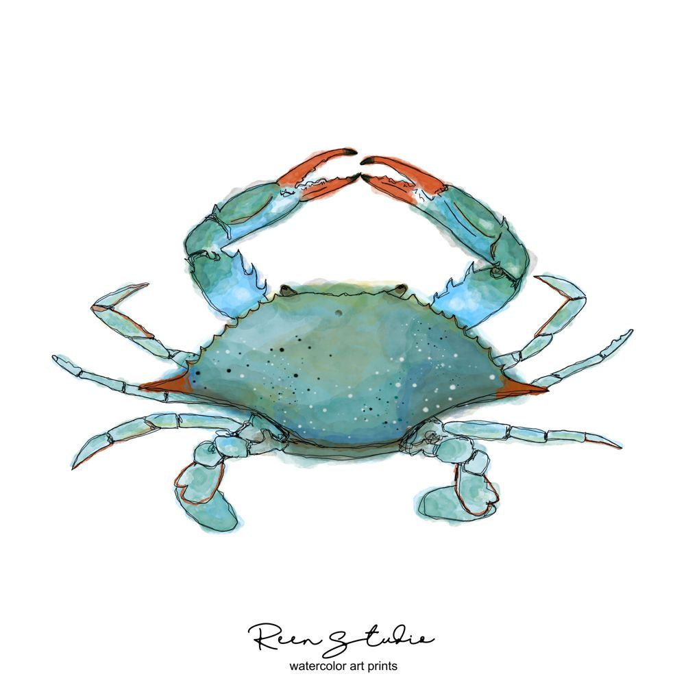 Atlantic Blue Crab Watercolor Wall Art Digital Printable Art By