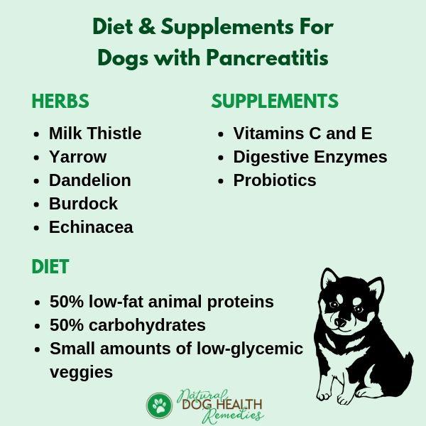 pancreatitis in dogs diet