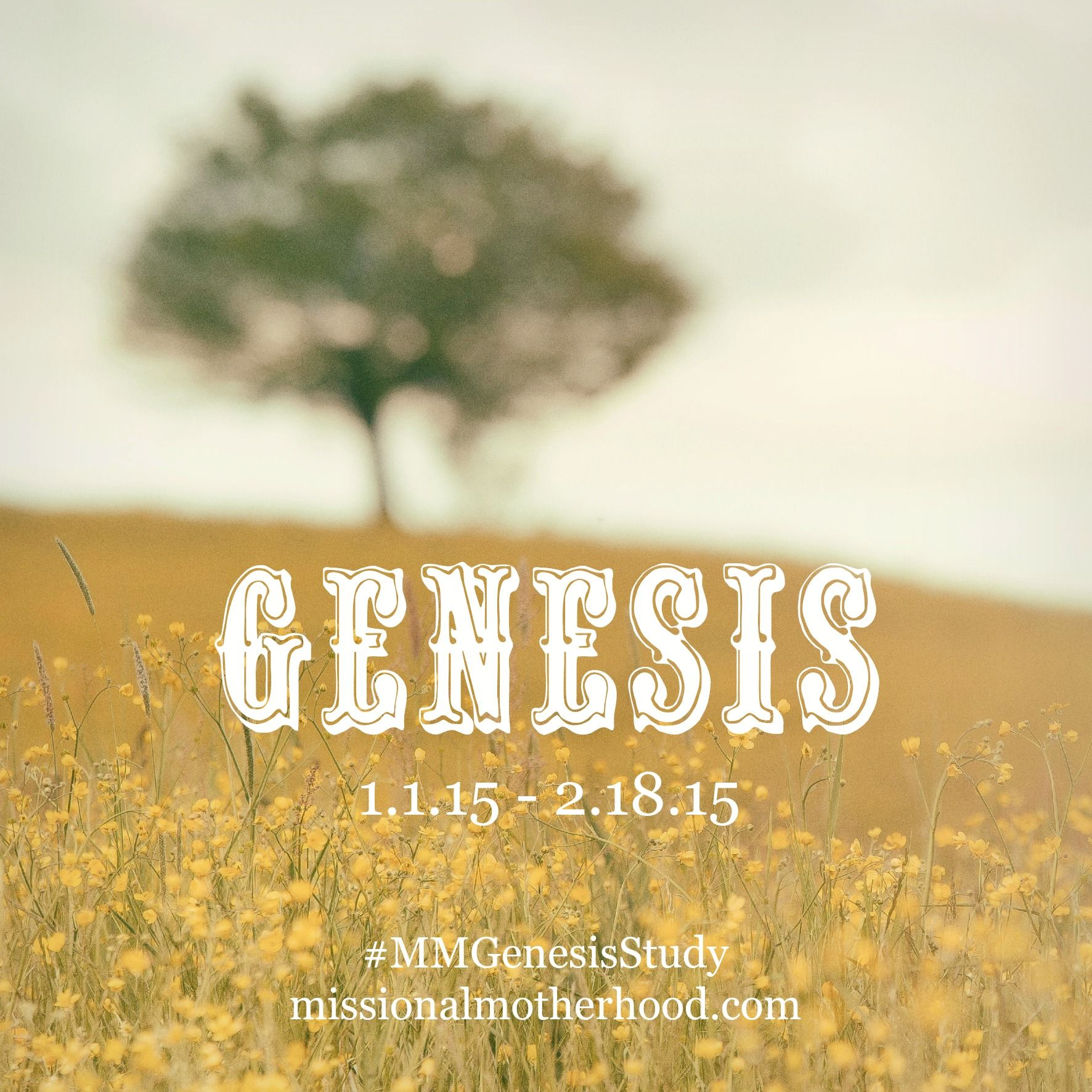 Mmgenesisstudy A Bible Study For The New Year Missionalmotherhood Com Is Spending Time In God S Word O Bible Study Genesis Bible Study Bible Study Journal