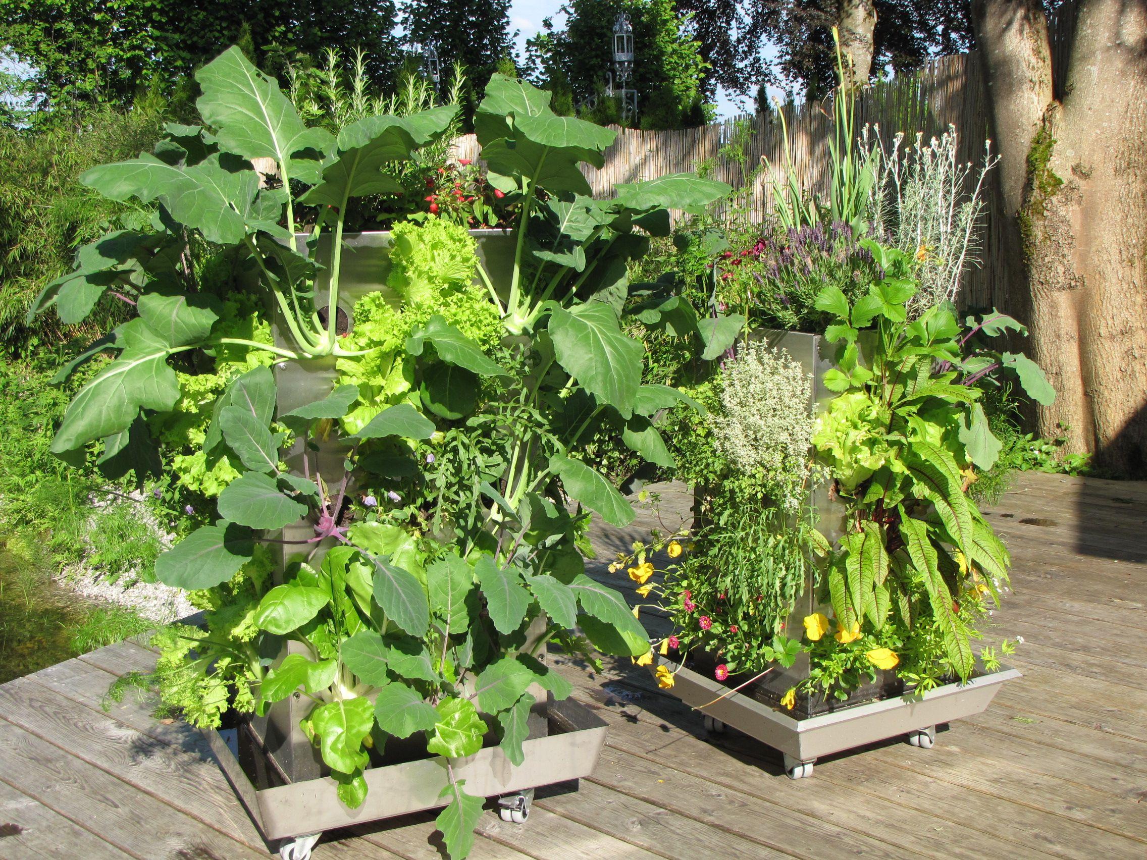 kubi maxi und kubi mini auf der terrasse kubi hochbeet vertical gardening kompost. Black Bedroom Furniture Sets. Home Design Ideas