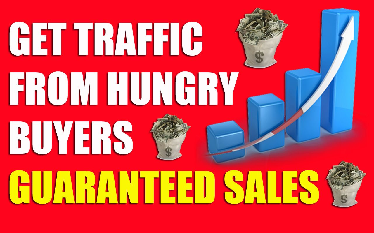 Drive unlimited real traffic to your website For 60 Days for $30