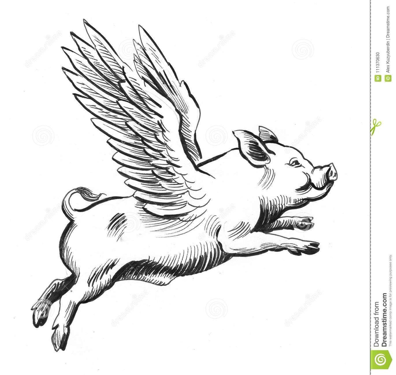 Flying pig flying pigs art pig illustration flying pig