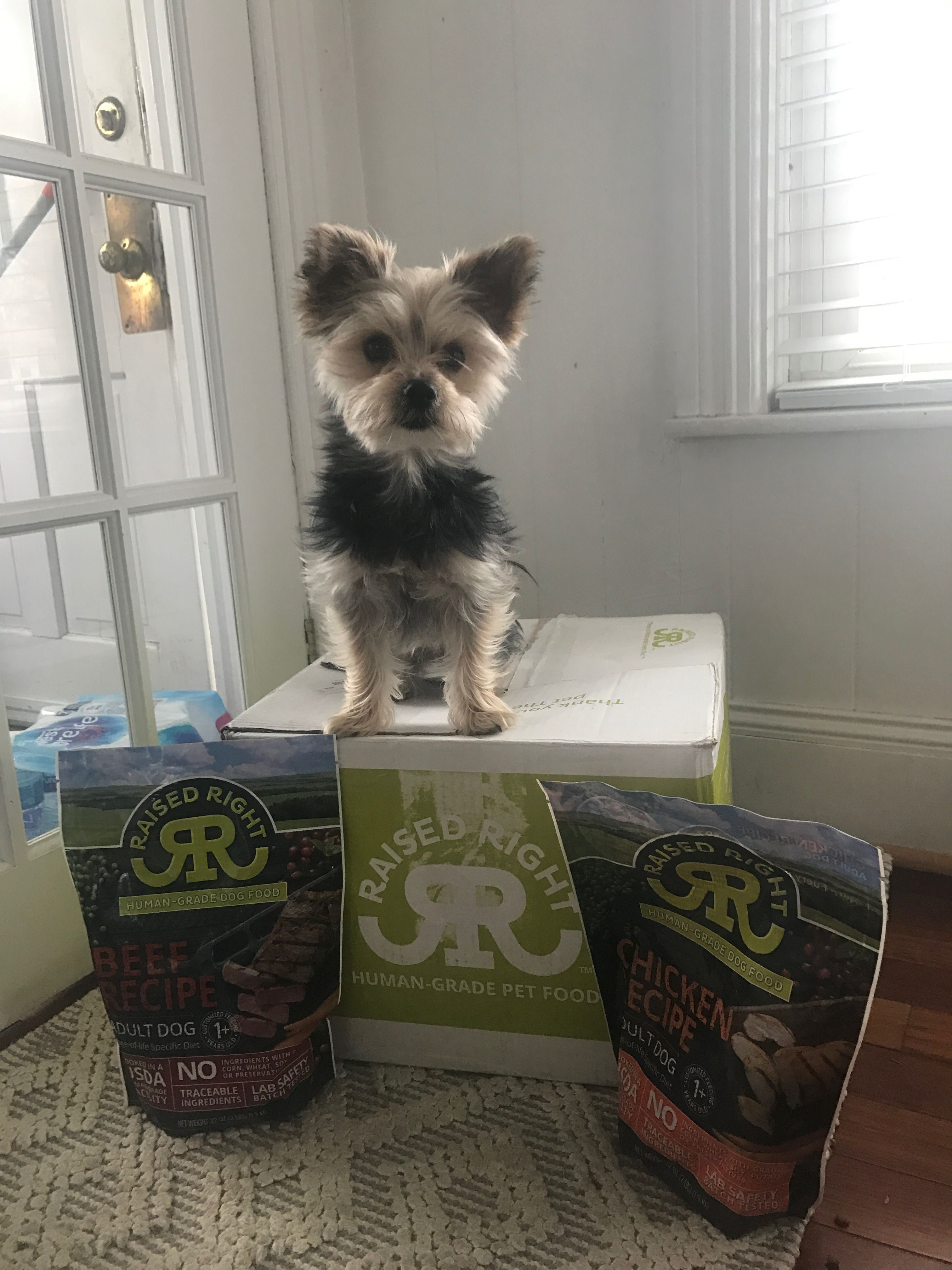 Raised Right Pets is a home delivery subscription service