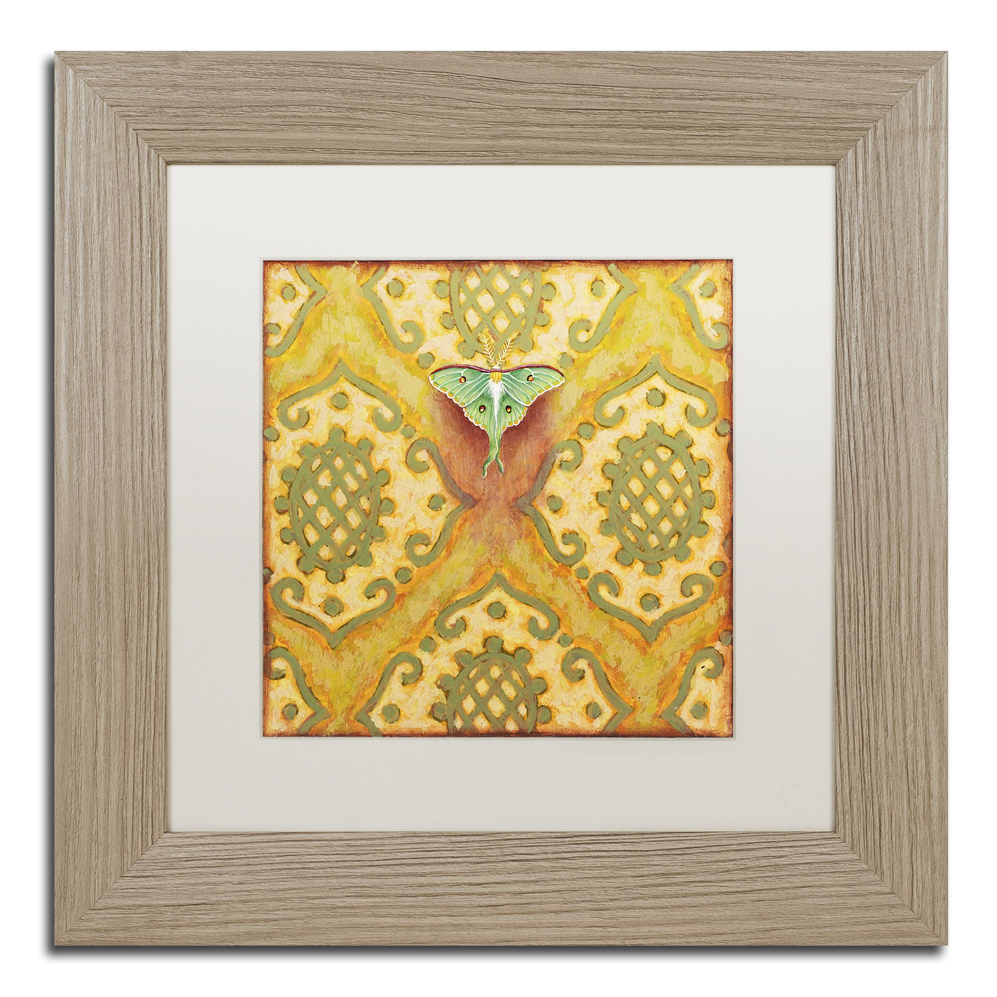 Rachel Paxton \'Bayberry Luna Moth\' Matted Framed Art | Products ...