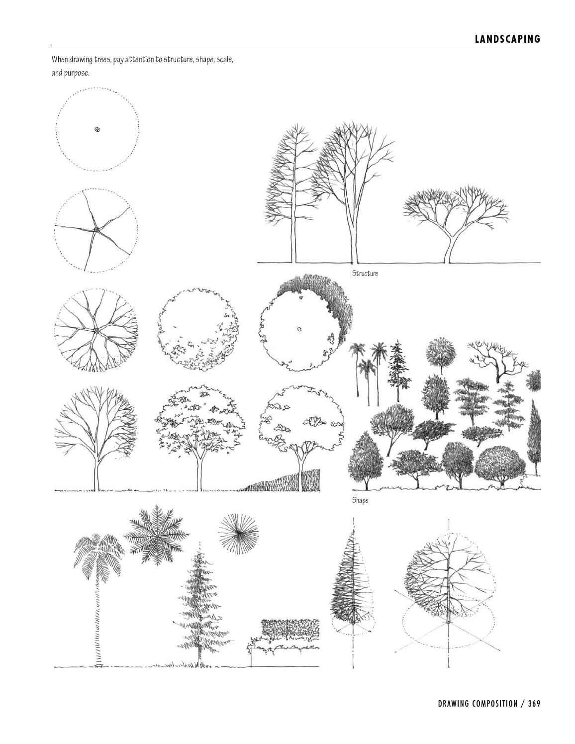 architecture - Architecture Drawing Of Trees
