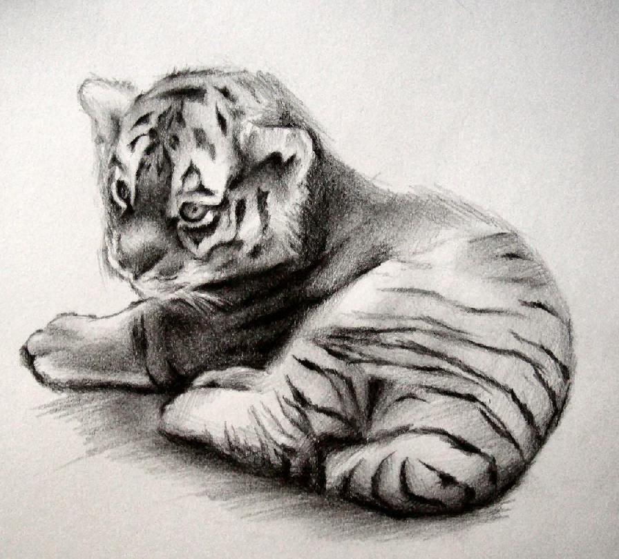Pencil painting pic google search