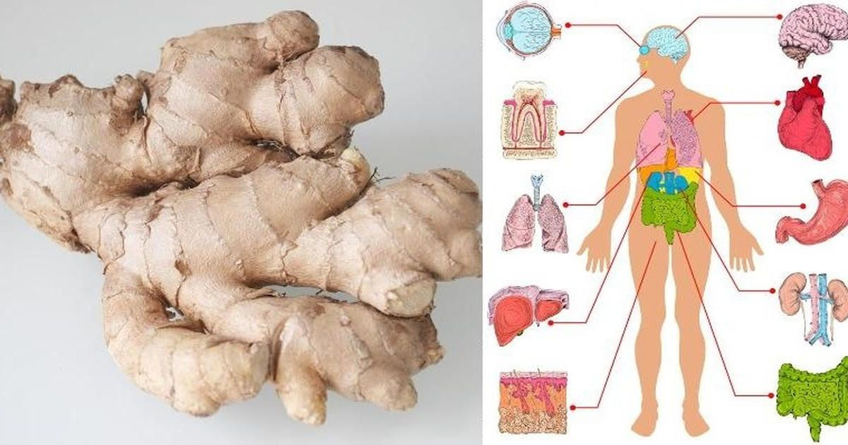 what is ginger used for in medicine