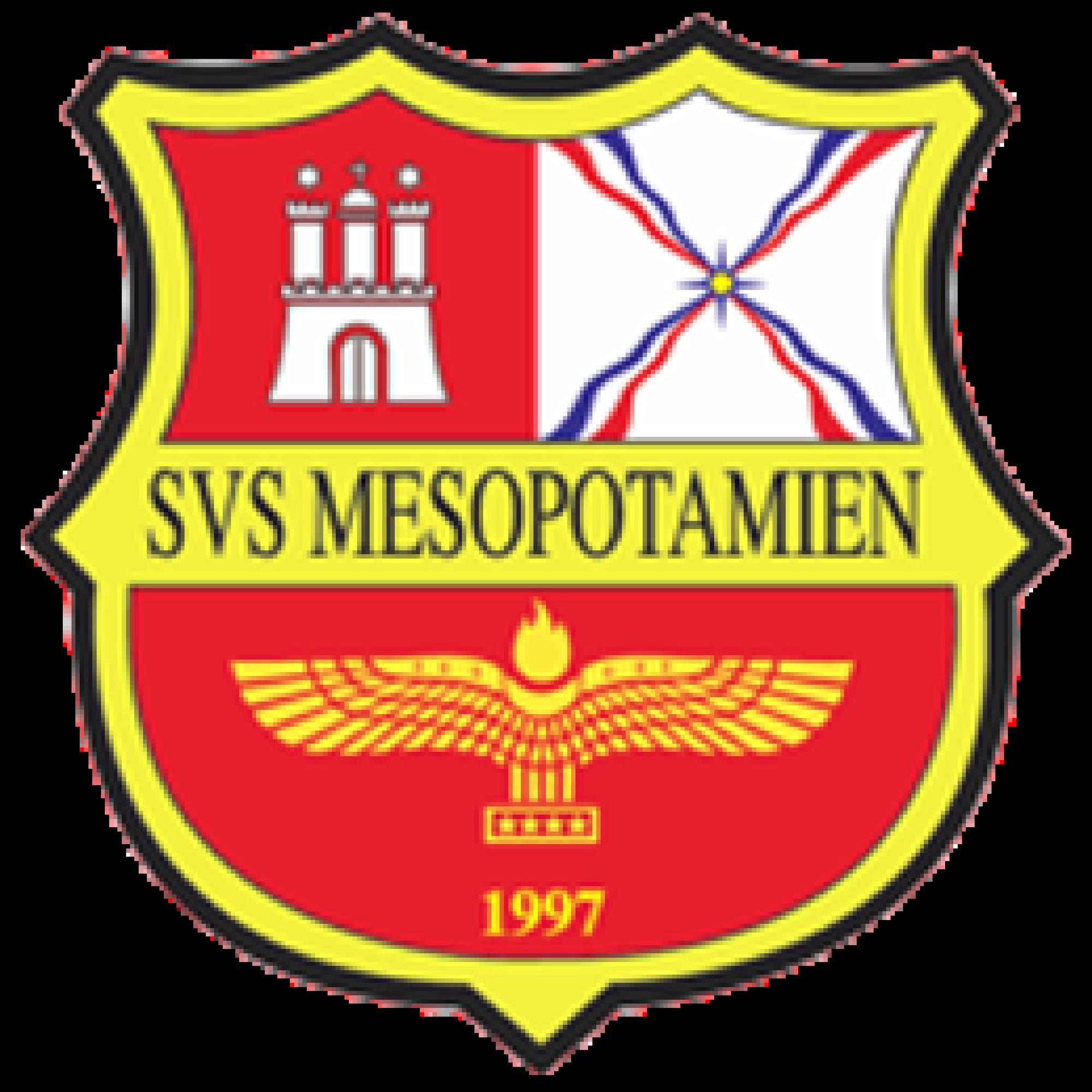 Svs Mesopotamien German Football Clubs Sport Team Logos