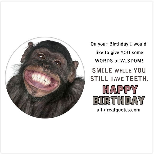 Happy Birthday To You Birthday Wishes Funny Funny Happy Birthday Wishes Birthday Wishes Greeting Cards