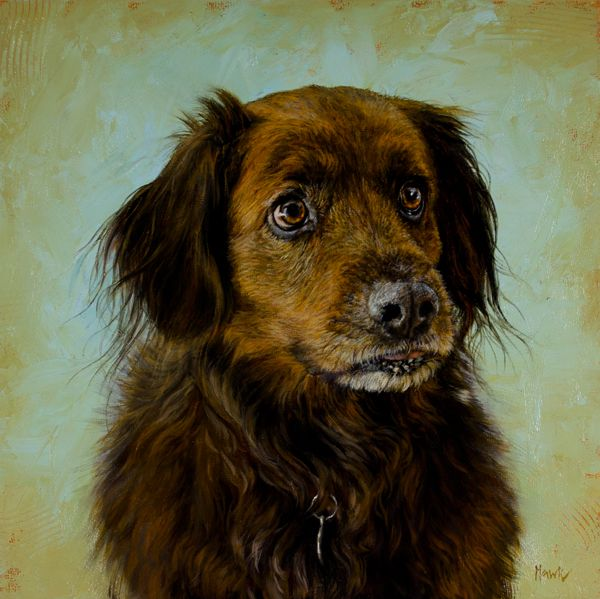 New York City Dog Portrait Oil Paintings For Sale By Dana Hawk