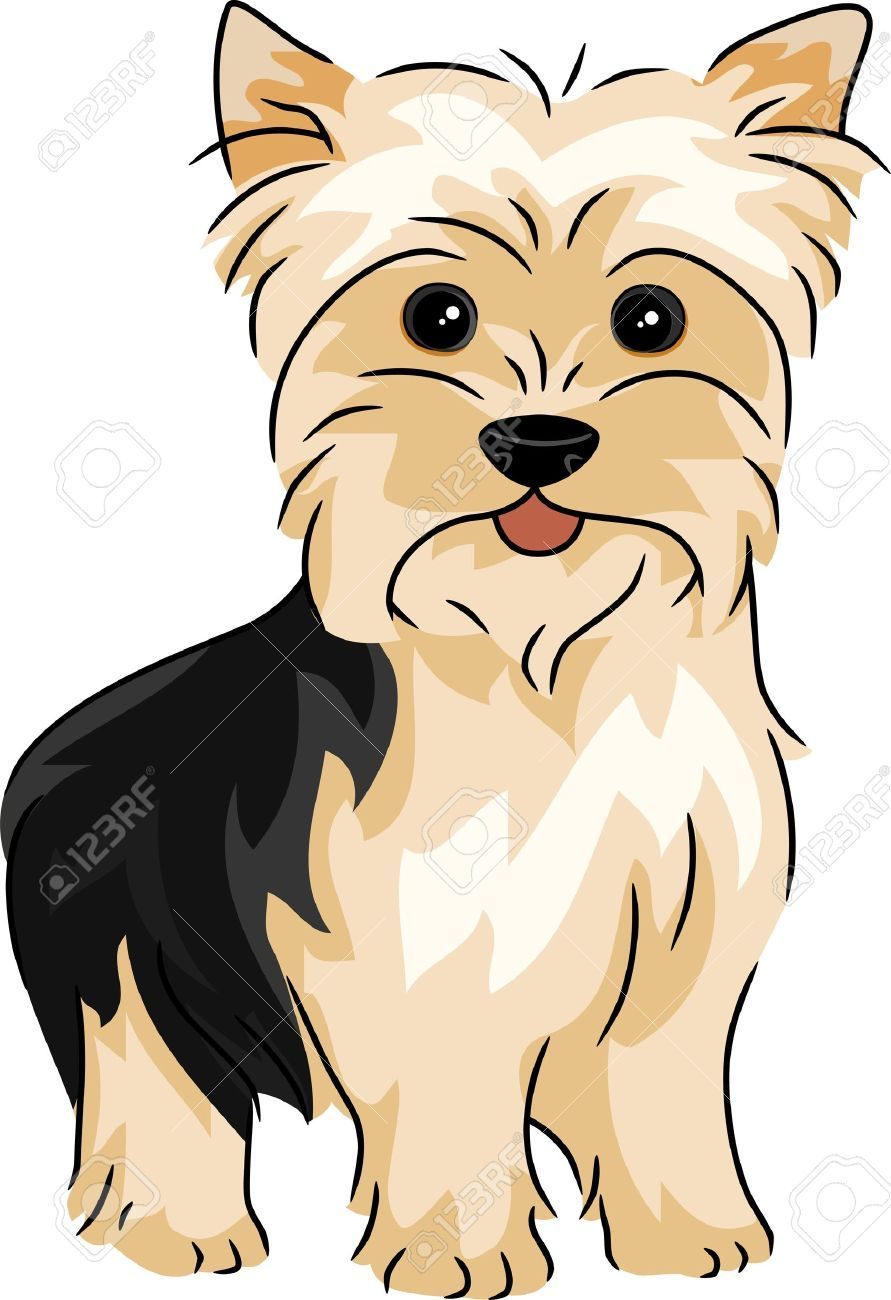 Coloring pages yorkie - Find This Pin And More On Art By Lisalcf