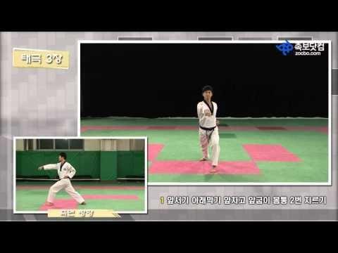 태권도품새 1장(시범: 용인대 정스민) - YouTube
