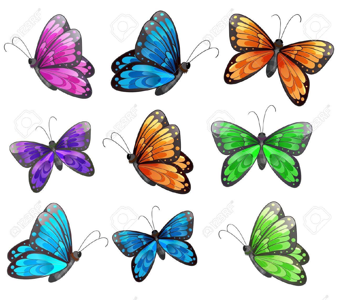 Papillon dessin recherche google dessin insectes papillons pinterest - Papillon dessin couleur ...
