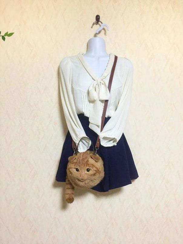 La designer giapponese Pico ha creato una linea di borse per gli amanti dei nostri amici felini talmente realistiche da costare più di un gatto vero.