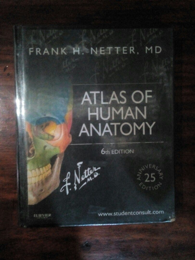 Netters Atlas Of Human Anatomy Human Anatomy Drawing Pinterest