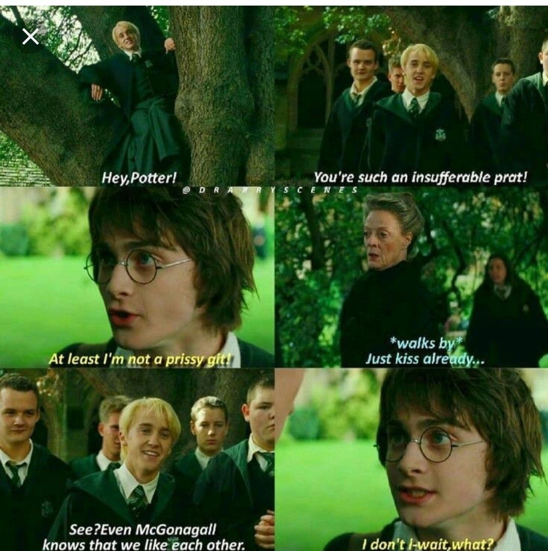 Pin By Kim Chartier On Hunger Games Harry Potter Harry Potter Comics Harry Potter Headcannons Funny Harry Potter Jokes