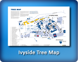 Altoona Tree Map