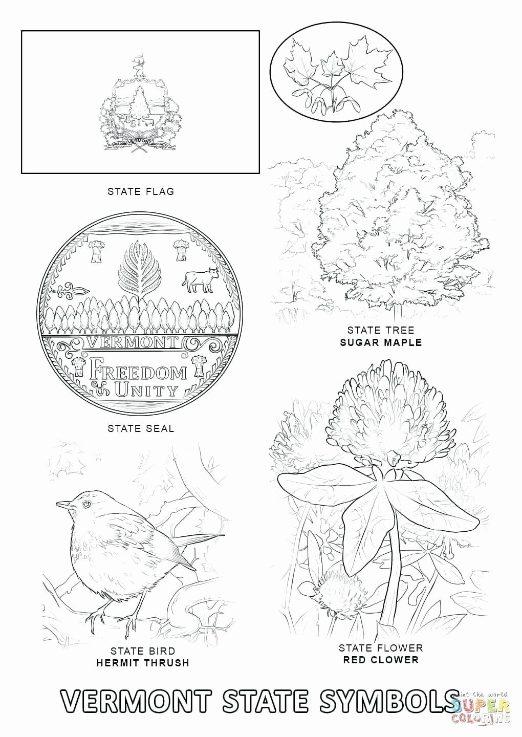 State Bird Coloring Pages Beautiful Nigeria Flag Coloring Page