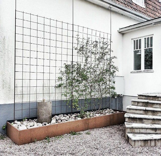 armeringsn t pour cacher le mur de mon voisin qui est moche terrasse pinterest mon voisin. Black Bedroom Furniture Sets. Home Design Ideas