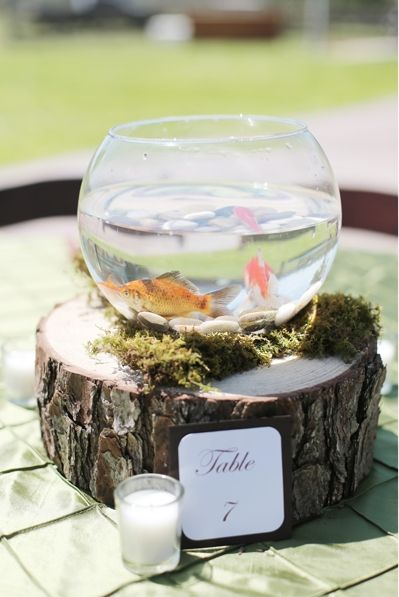 Rustic Fishbowl Centerpiece Photo By Feather Twine Photography