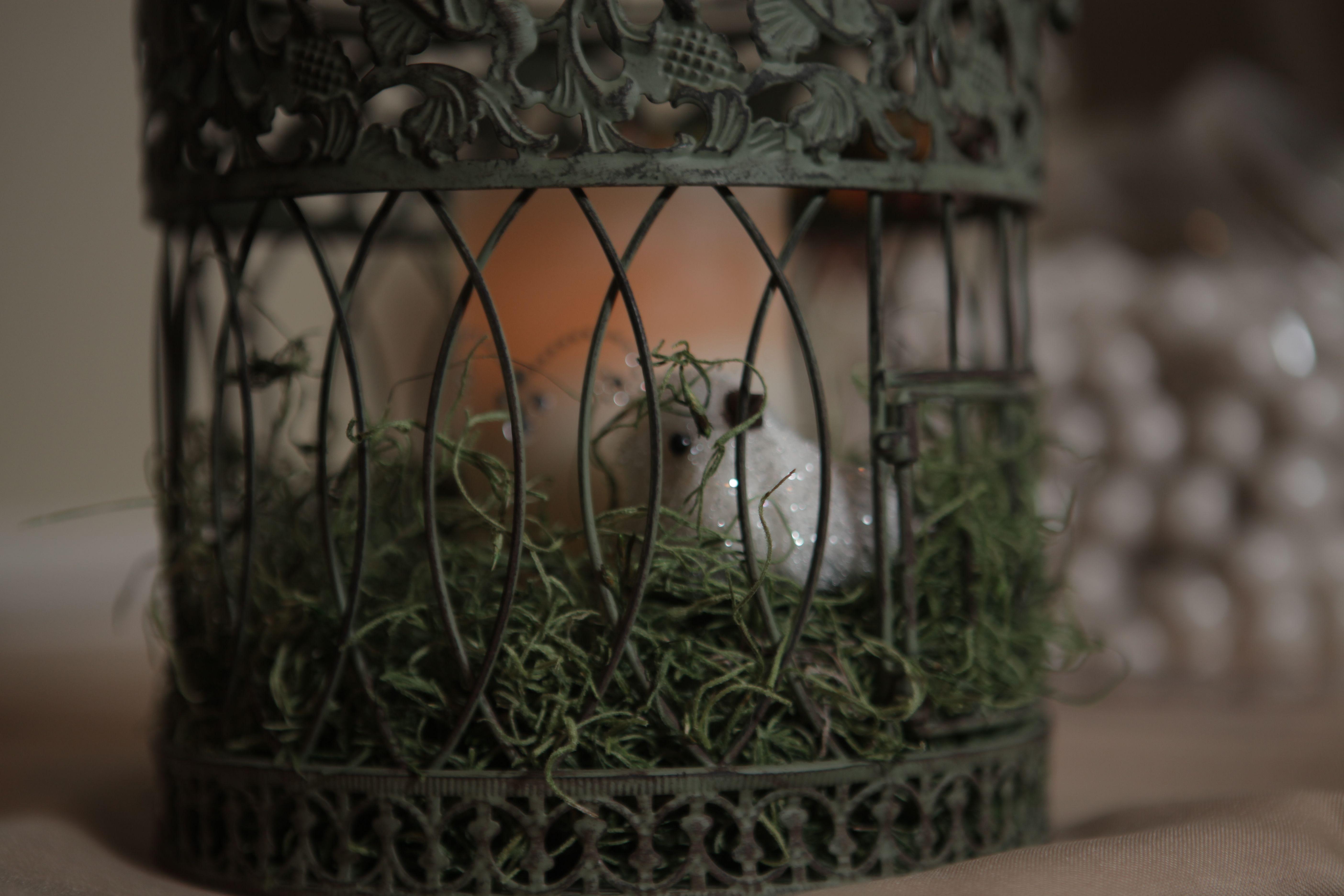Communion Centerpiece Birdcage Wbird