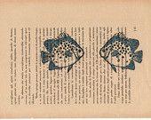 Pag.45, Acquario di pesci azzurri.Posizione pagina: orizzontale.