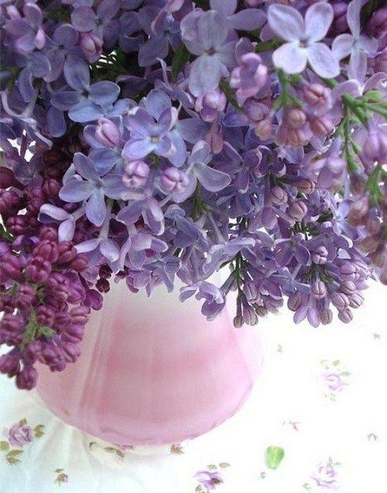 Tischdeko Mit Blumen-strauß Mit Flieder-duftend | Flieder ... Schnittblumen Frische Strause Garten