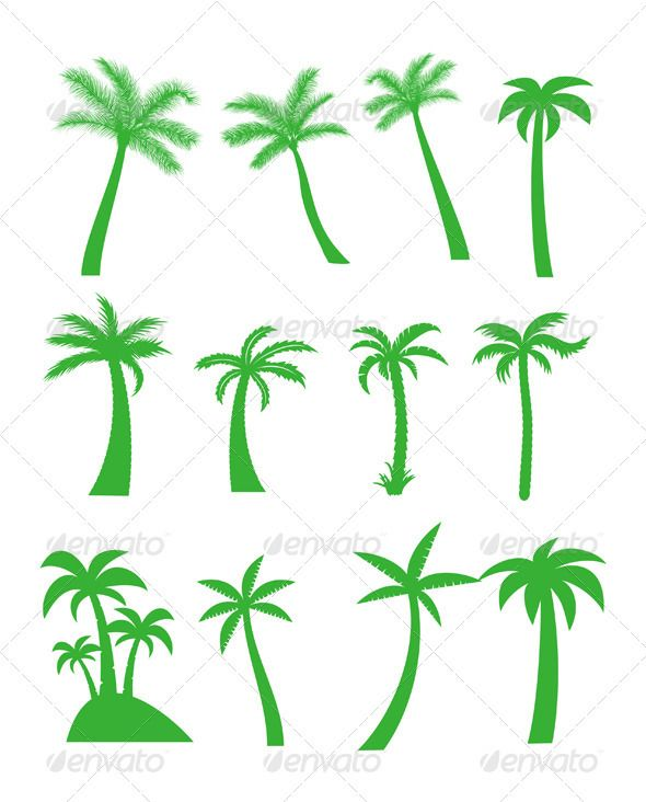 Palm Trees Palm Tree Icon Tree Icon Vector Graphics Design