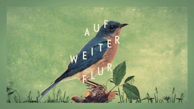 """""""Auf weiter Flur"""" Musik Festival // 1. & 2. August 2014 www.aufweiterflur.de  Trailer: SvenStratmann (Animation&Edit), Enrica Granado (CI Design) Musik: Buddy Rich"""