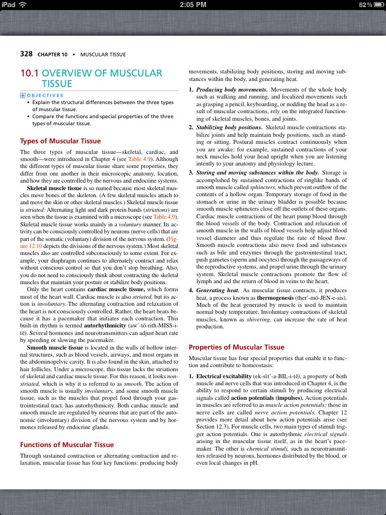 Principles of Anatomy and Physiology, Chapter 10, Muscular Tissue, 2 ...