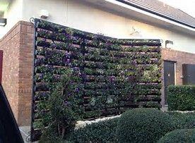 Image result for gutter garden hydroponic