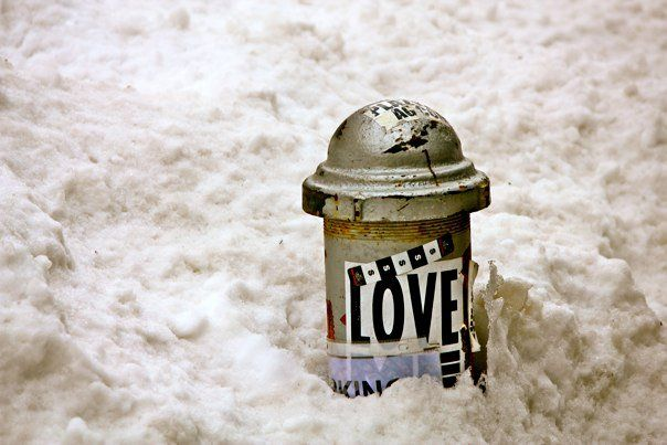 love in the snow.