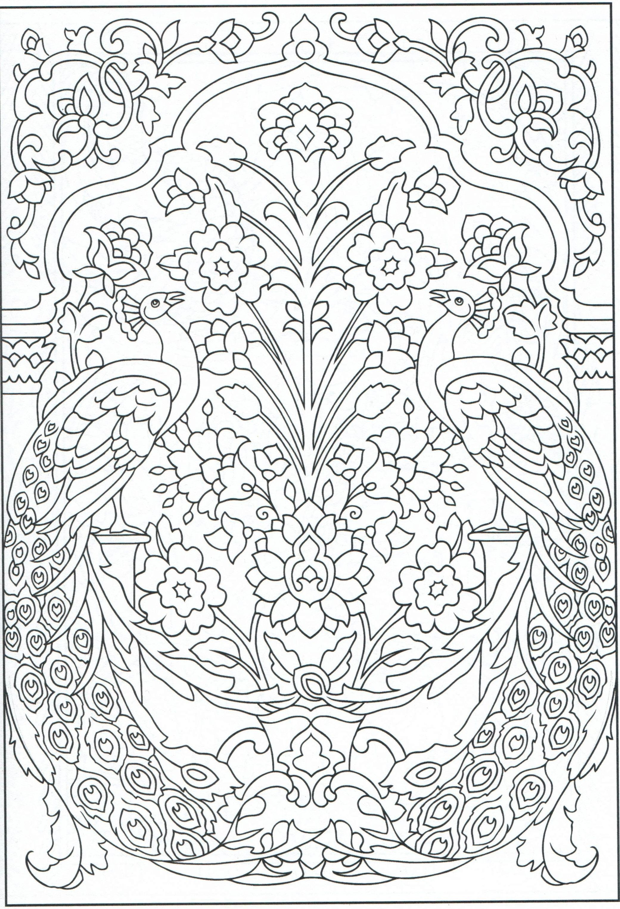 peacock coloring page for adults 1 31 color pages pinterest
