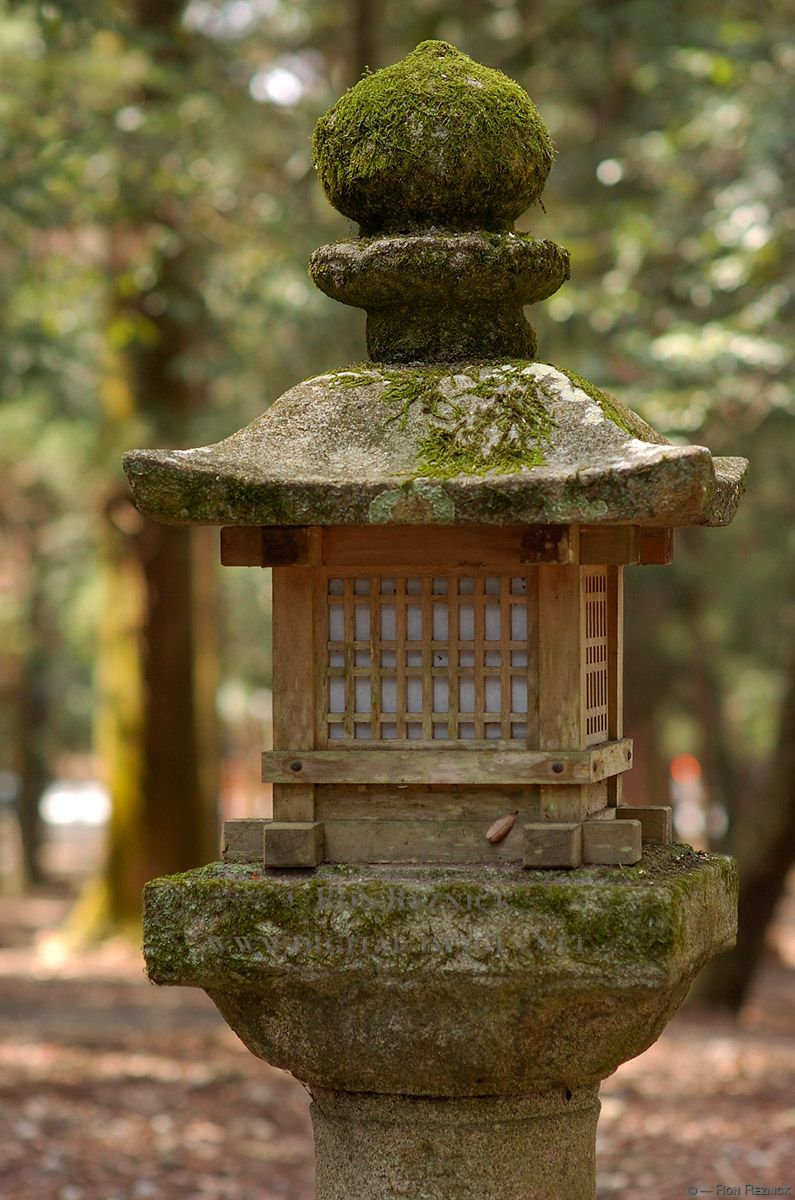 How to Make a Zen Garden | Jardin | Pinterest | Milling, Japanese ...