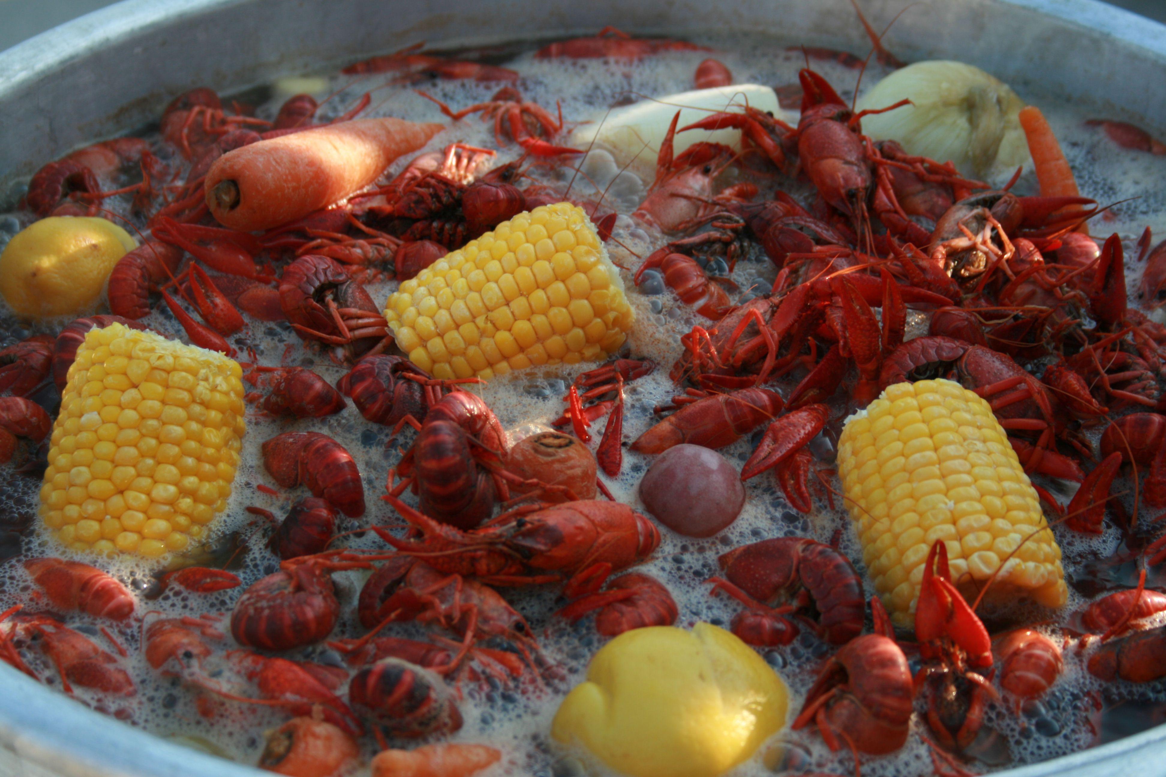 Crawfish boil at my house oh yeah crawfish crawfish