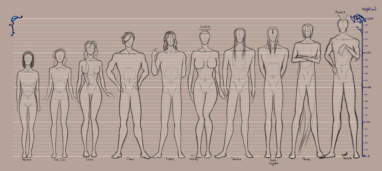 Oc Height Chart Height Chart Drawings Human Height