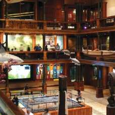 Bishop Museum - included attraction on the Go Oahu Card!