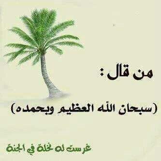 سبحان الله وبحمده سبحان الله العظيم Islam Facts Salaah Home Decor Decals
